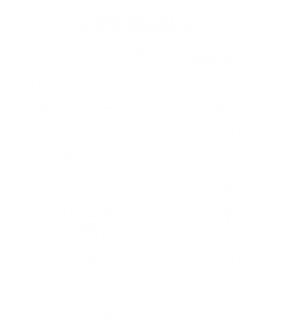 Inventor generating an idea icon